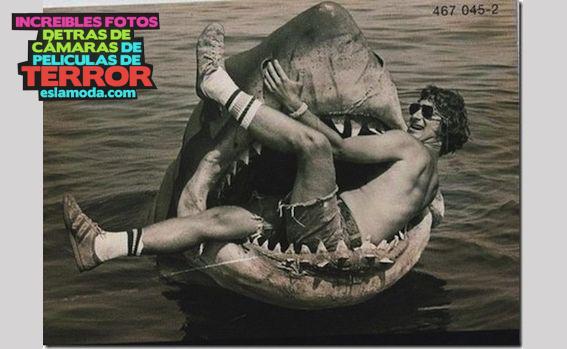 tiburon-2
