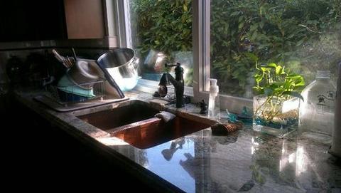 higienes3