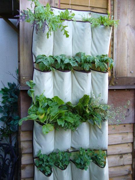 jardinería6