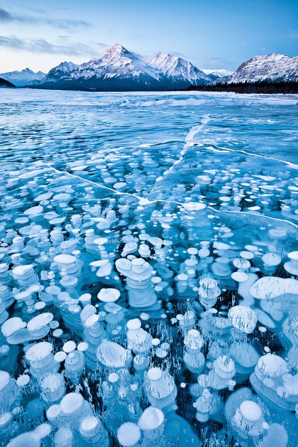 burbujas metano