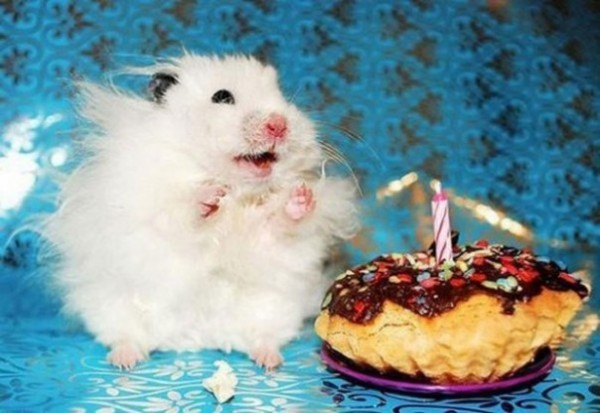 cumpleaños12