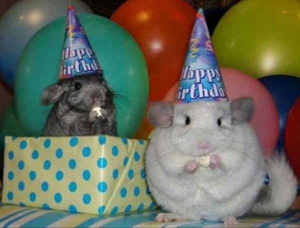 cumpleaños19