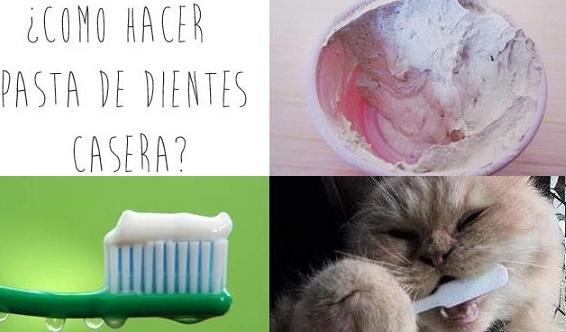 dentifrico casero