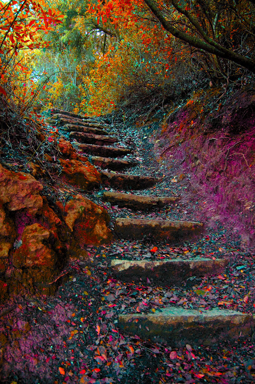 escaleras18