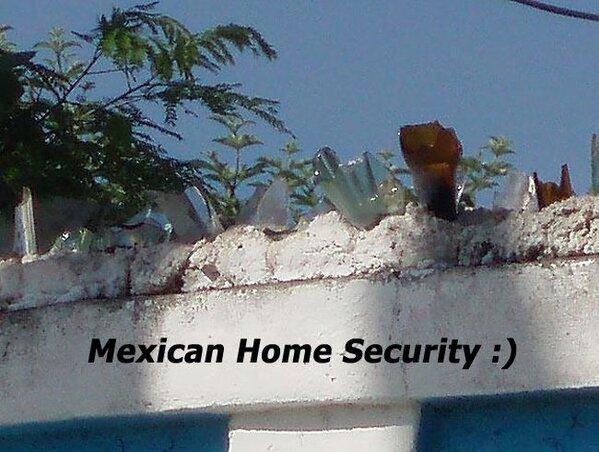 ingenio mexicano11
