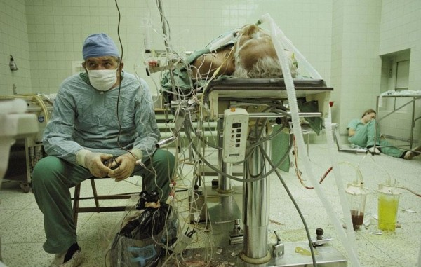 transplante 2