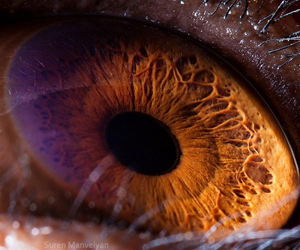 ojos alta resolucion7