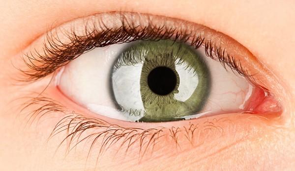 ojosl