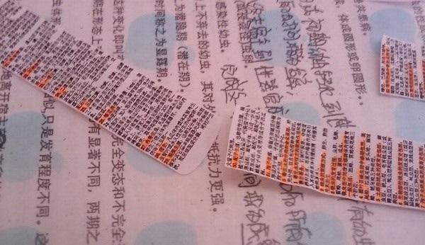 tecbnicas chinas examen12