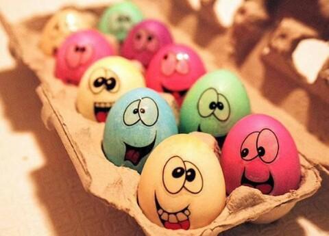 eggs micro