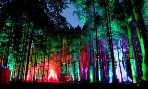 Bosque eléctrico Music Festival