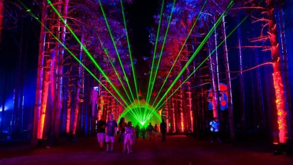 Bosque eléctrico Music Festival2