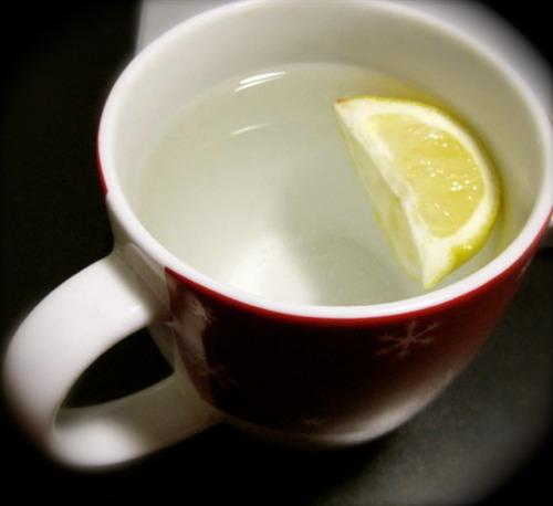 tibia limon