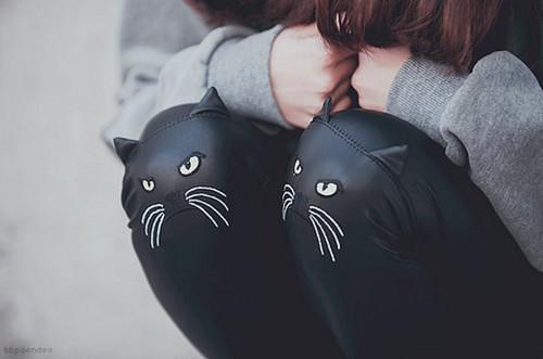 gatos leggins
