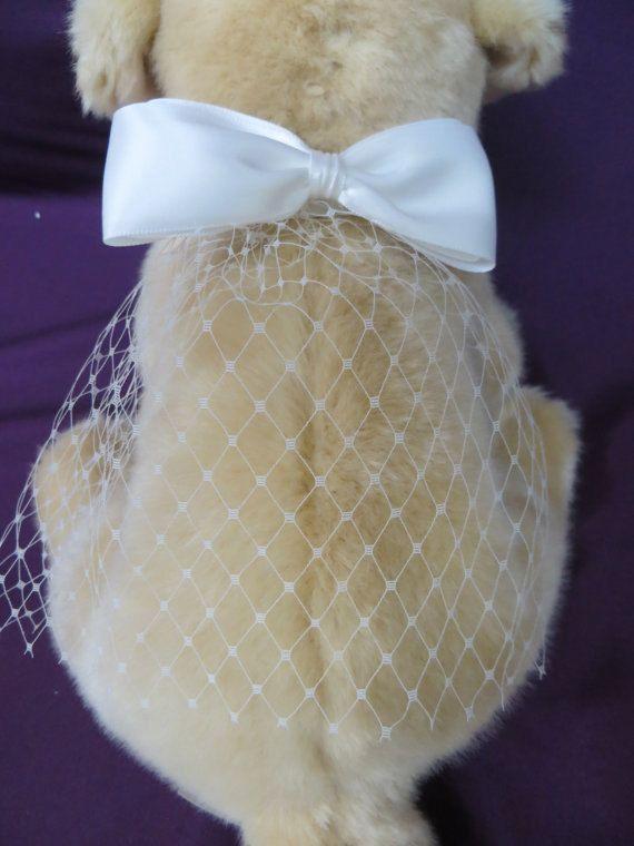 wedding dogs14