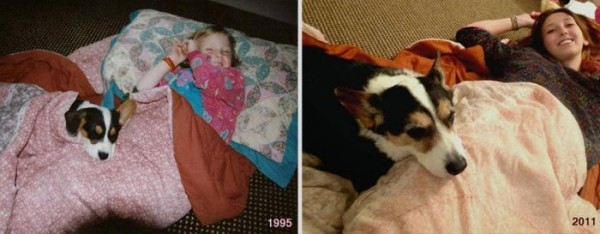 Before-After-Pets-09