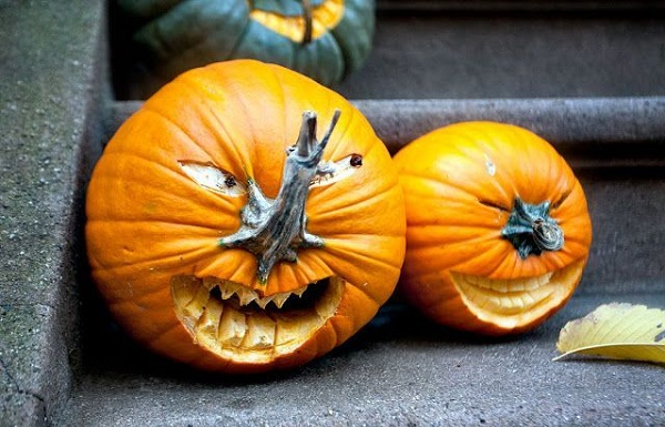 pumpkin ideas24