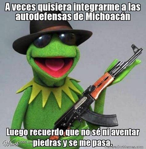 rené memes28