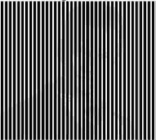 shake your head to see the picture3