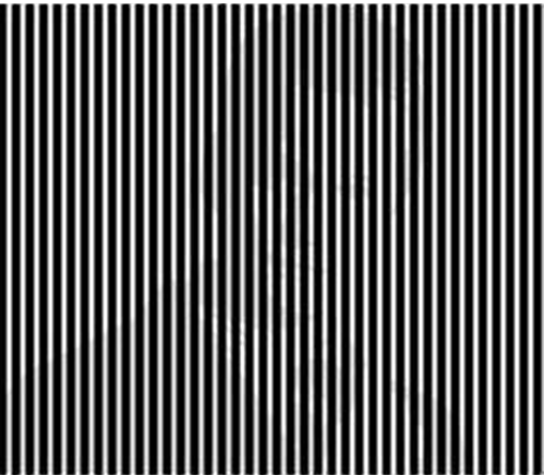 shake your head to see the picture9