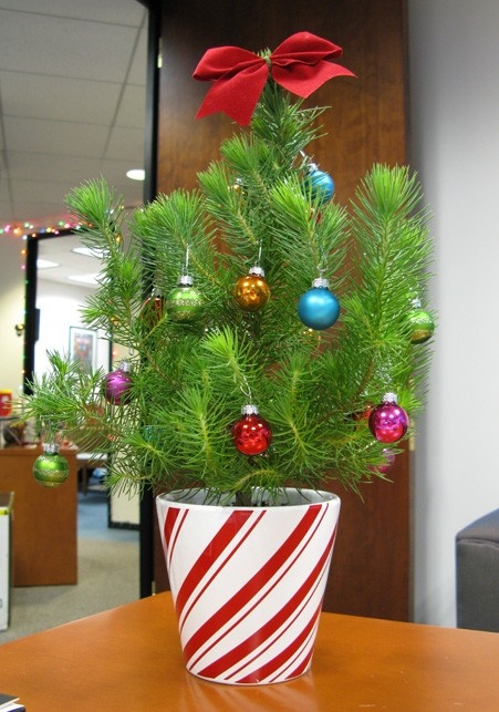 Depressing Office Christmas Decorations10