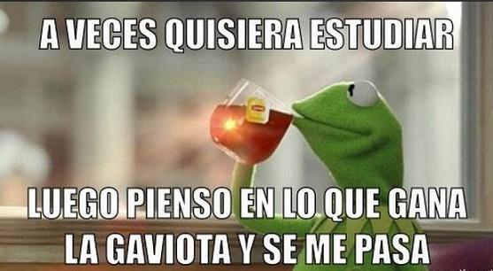 angelica rivera memes14