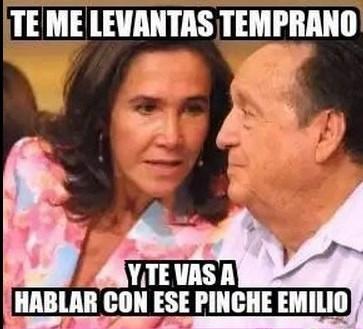 angelica rivera memes6