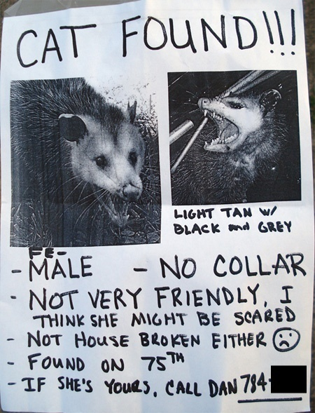 anuncios de mascotas perdidas4