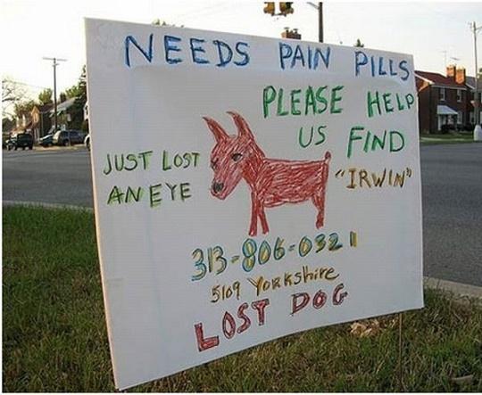 16 anuncios de mascotas perdidas que te harán morir de risa