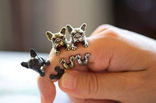25gifts for dog lovers