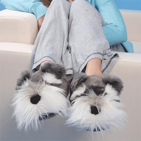 amantes de los perros2