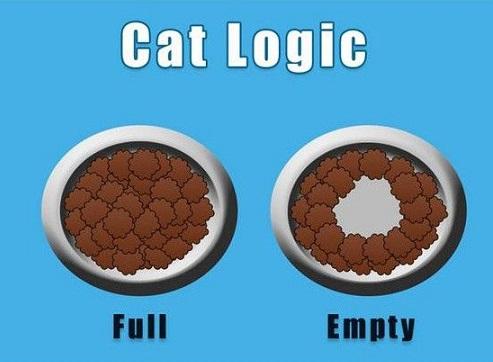cat logic16