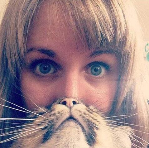 gatos y chicas5