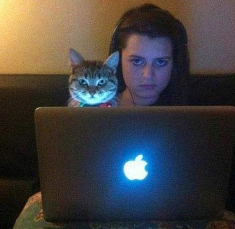 gatos y chicas8