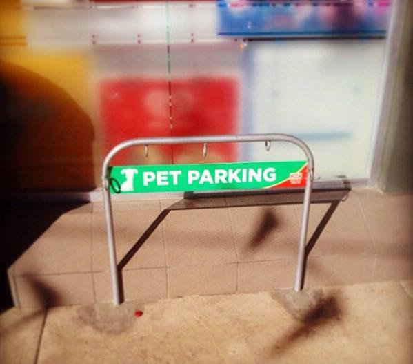 pet-parking