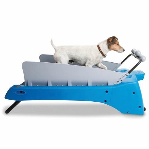 Productos para mascotas que querrás para tu uso personal15