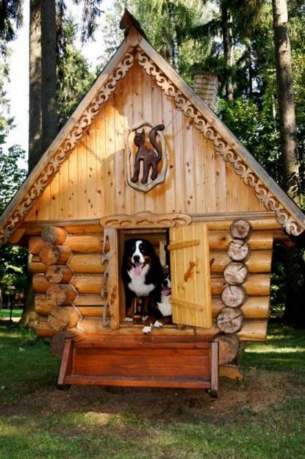 dog houses22