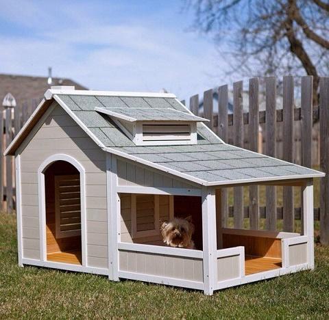 dog houses6