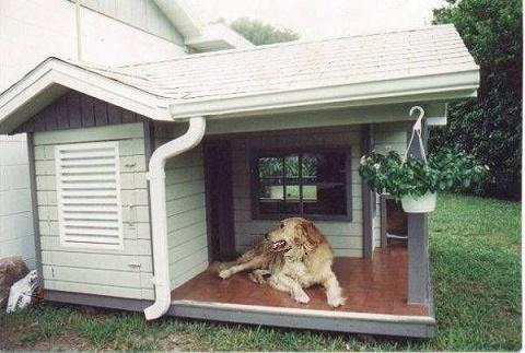 dog houses8