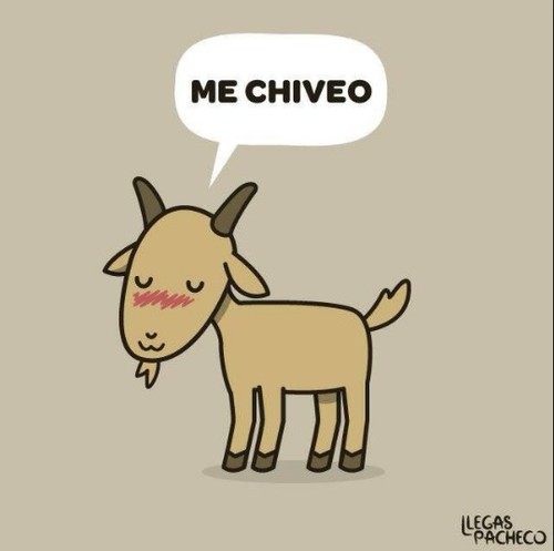 me chiveo