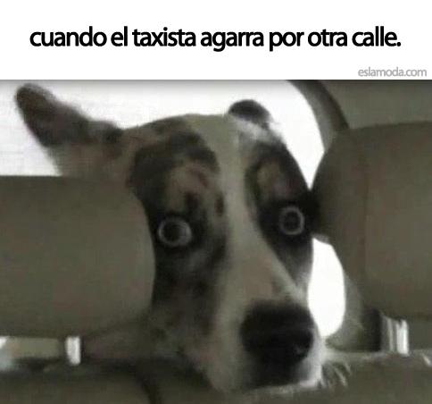cuando-el-taxista
