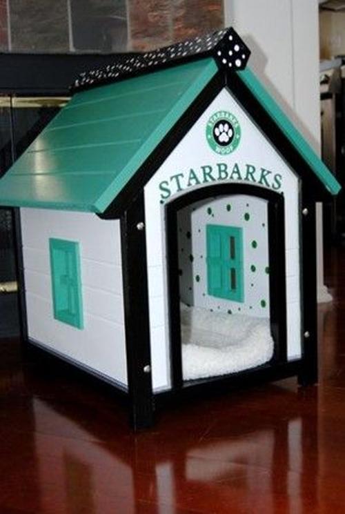 star-barks