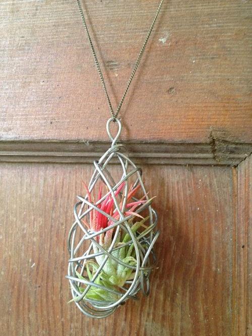 plants jewelry16