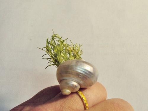 plants jewelry18