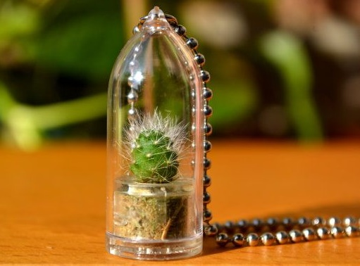 plants jewelry3