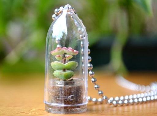 plants jewelry4