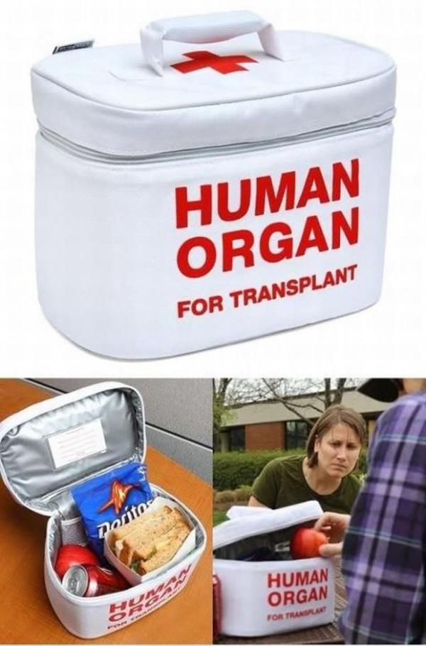 Organ Transport Lunch Cooler14