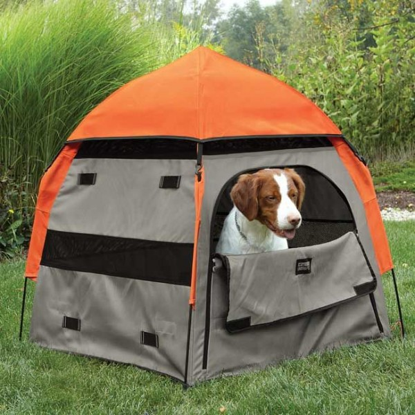 camping dog products12