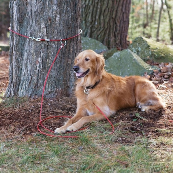 camping dog products14