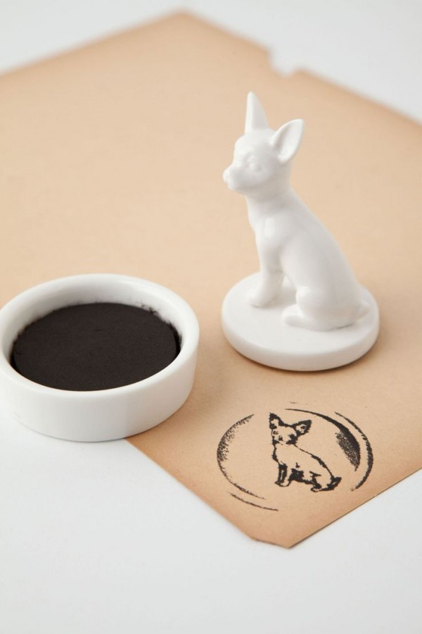 chihuahua products14
